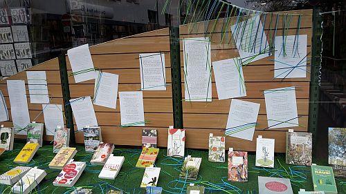 Bei Baudach gibt es neben Frühlingsbüchern und Neuerscheinungen auch Frühlingsgedichte - das alles passend dekoriert mit blauem (und grünem) Band