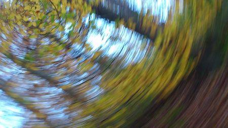 Herbstlaubkreisel
