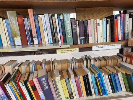 Blick in den Bücherwagen - Regale voller Bücher